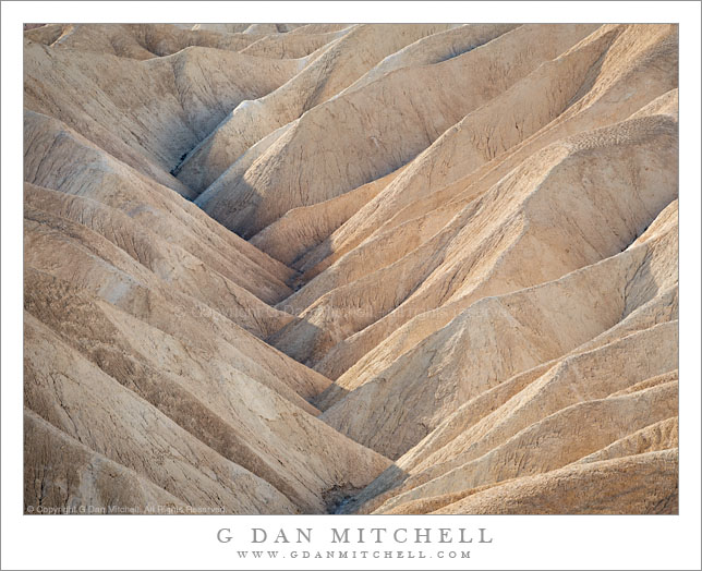 Gully, Morning Light, Zabriskie Point