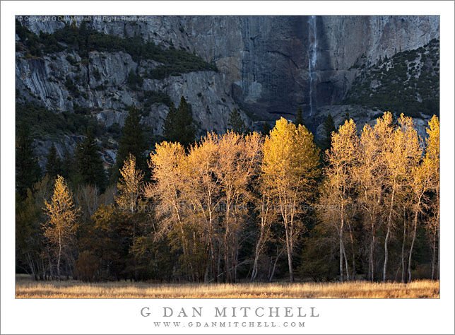 Edge of the Light - Yosemite Valley