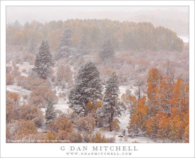 Early Autumn Snow, Eastern Sierra