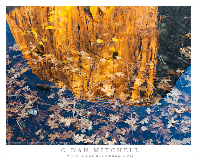 Autumn Leaves, Reflection of a Monolith