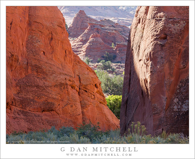 Canyon, Reflected Light