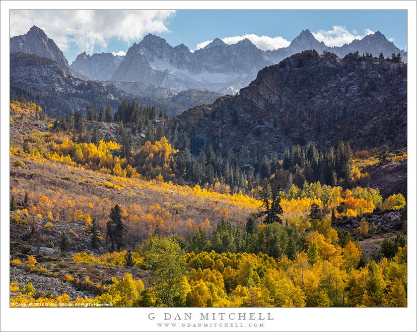Autumn Color, Sierra Nevada Crest